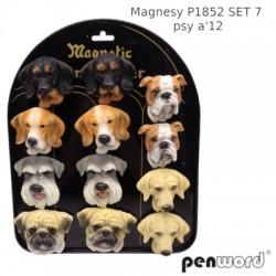 MAGNESY P1852 SET 7 PSY A'12