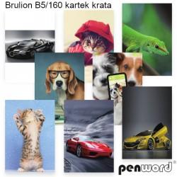 BRULION B5/160 KRATA
