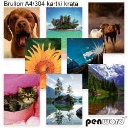BRULION A4/304 KRATA
