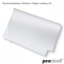 BRYSTOL BROKAT 40x60cm 200gsm SREBRNY a'5